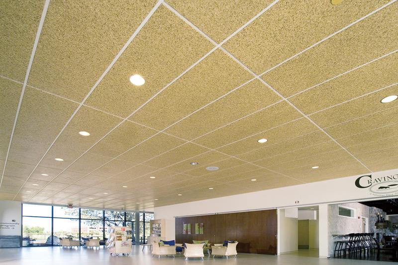 BIOLINE® Wood Ceiling Tiles